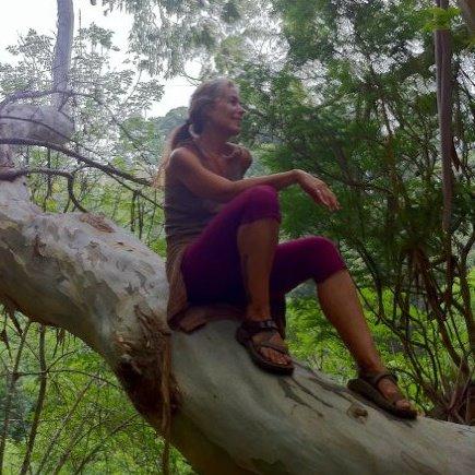 Wendy Tucker in a tree.